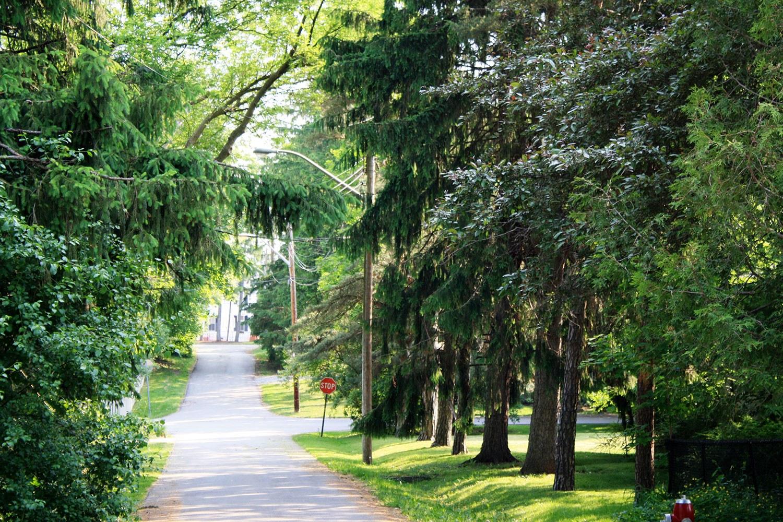 Paysage de rue de la Barberry Lane dans le DCP de Meadowvale Village (Photo : ville de Mississauga)