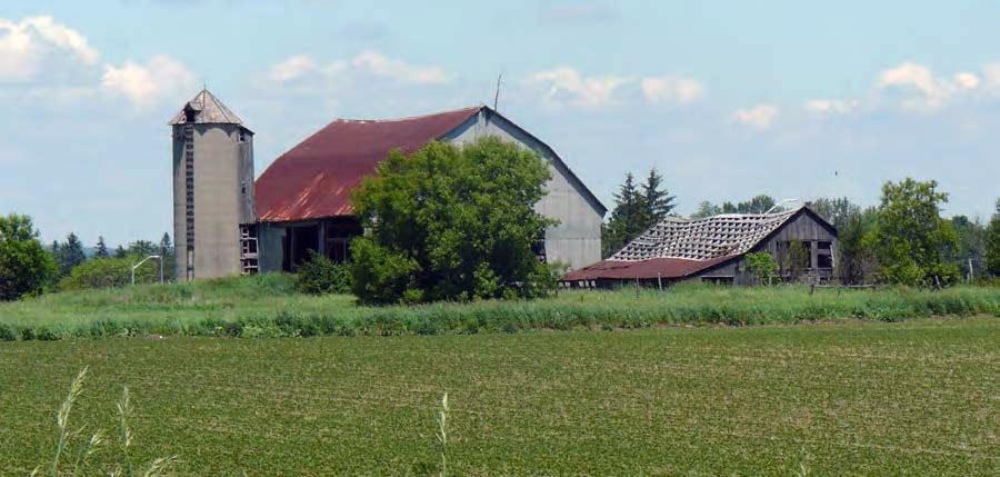 Une infrastructure agricole à l'abandon à Markham.