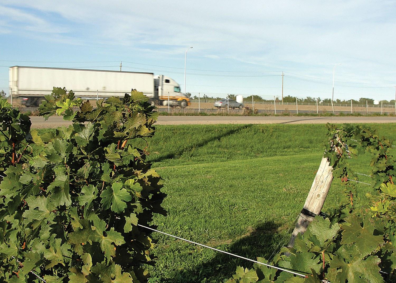 Les terres arables et l'infrastructure se font concurrence, comme on peut le constater ici dans ce vignoble niché dans la Twenty Valley, dans la région de la péninsule du Niagara, et coexistent avec la Queen Elizabeth Way, une autoroute à six voies très fréquentée, près de Beamsville.