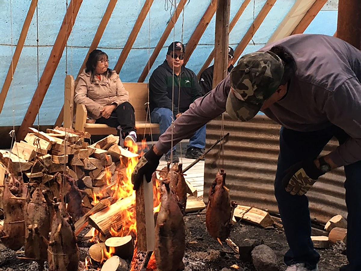 Grillade d'oies dans une communauté de la Première Nation Moose Cree à Moose Factory.